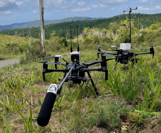 Dotterel-drone-with-aerial-audio-in-Hunua-Ranges-March-2021-e1617018158252